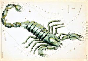 Constelación de Escorpio