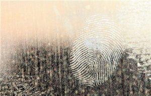 Psicología forense Qué es, características, para qué sirve, áreas, funciones