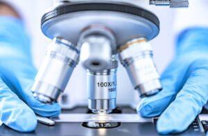 Microbiología Qué es, características, qué estudia, ramas, aplicaciones
