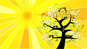 Solsticio Qué es, características, cuándo ocurre Invierno, verano