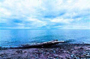 Lago Erie Qué es, ubicación, características, ríos, ciudades, fauna, flora