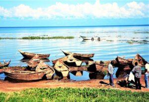Lago Victoria Qué es, ubicación, características, afluentes, ciudades, fauna, flora