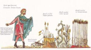 Parábola del sembrador Resumen, personajes, enseñanza, explicación