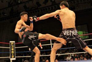 Artes marciales mixtas Qué son, características, historia, fundamentos, reglas