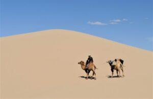 Desierto de Gobi | Qué es, características, historia, ubicación, fauna, flora