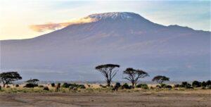 Kilimanjaro | Qué es, características, historia, formación, erupciones, fauna