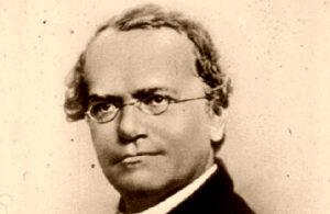 Gregor Mendel | Quién fue, biografía, aportaciones, genética, frases, obras