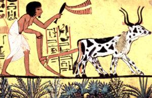 Holoceno   Qué es, características, clima, desarrollo humano, cuándo comenzó